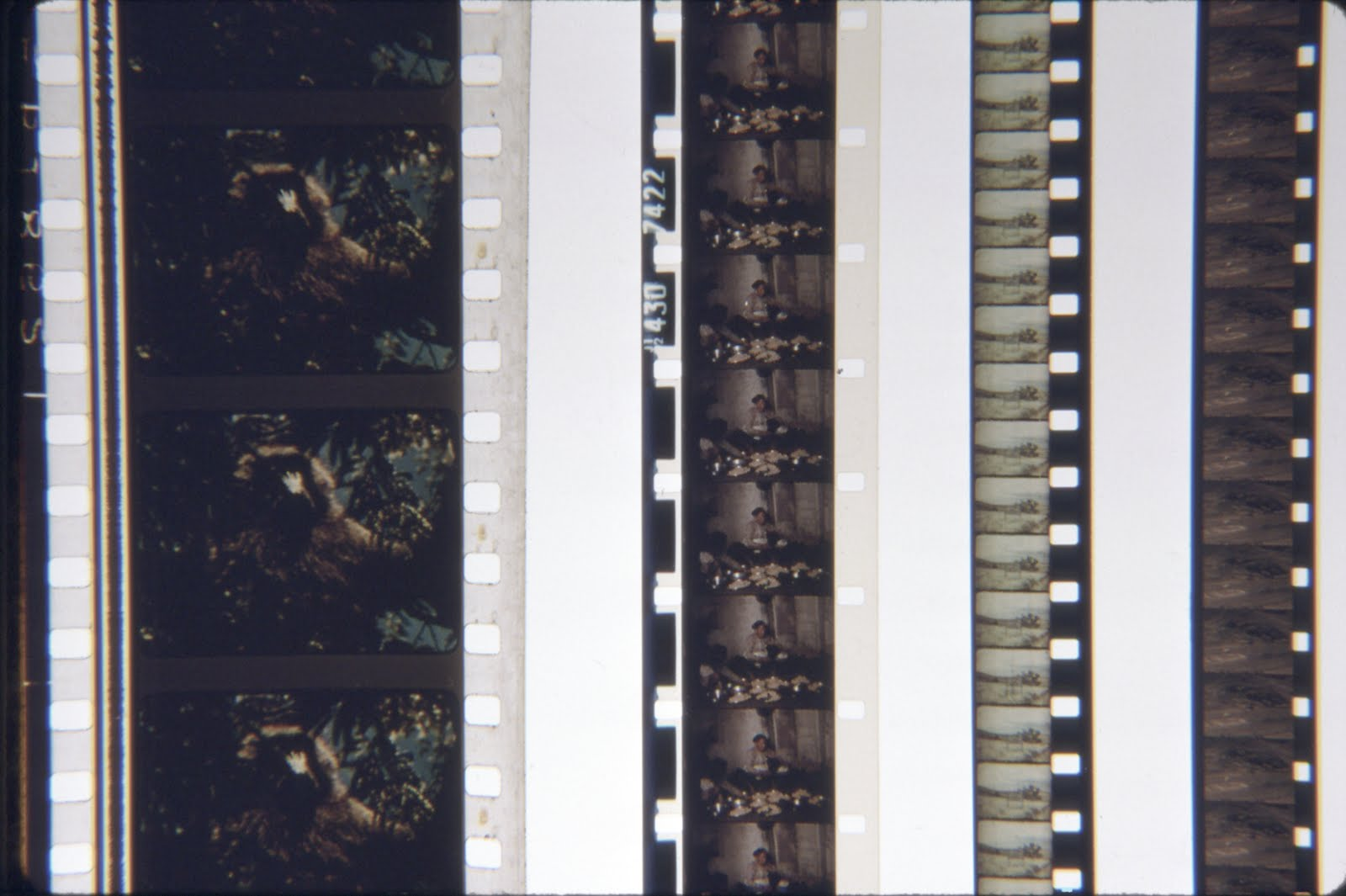 Frame Rates Simplified | Video Transfer & Film Transfer Service: VHS ...